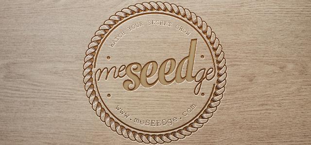meSEEDge Logotype-01