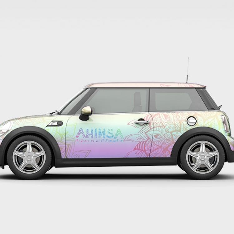 Car ahimsa