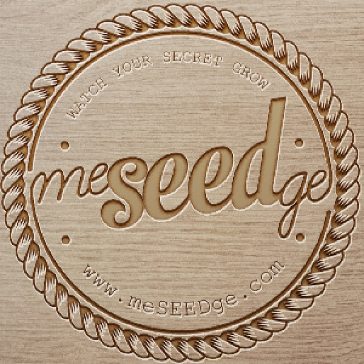 meSEEDge Logotype-01
